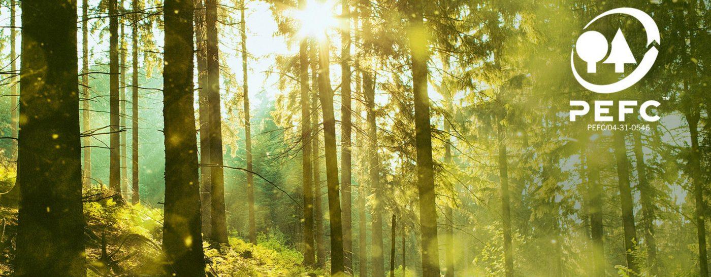 Sàn gỗ Binyl - Môi trường bền vững